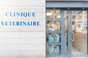 Clinique veterinaire Paris