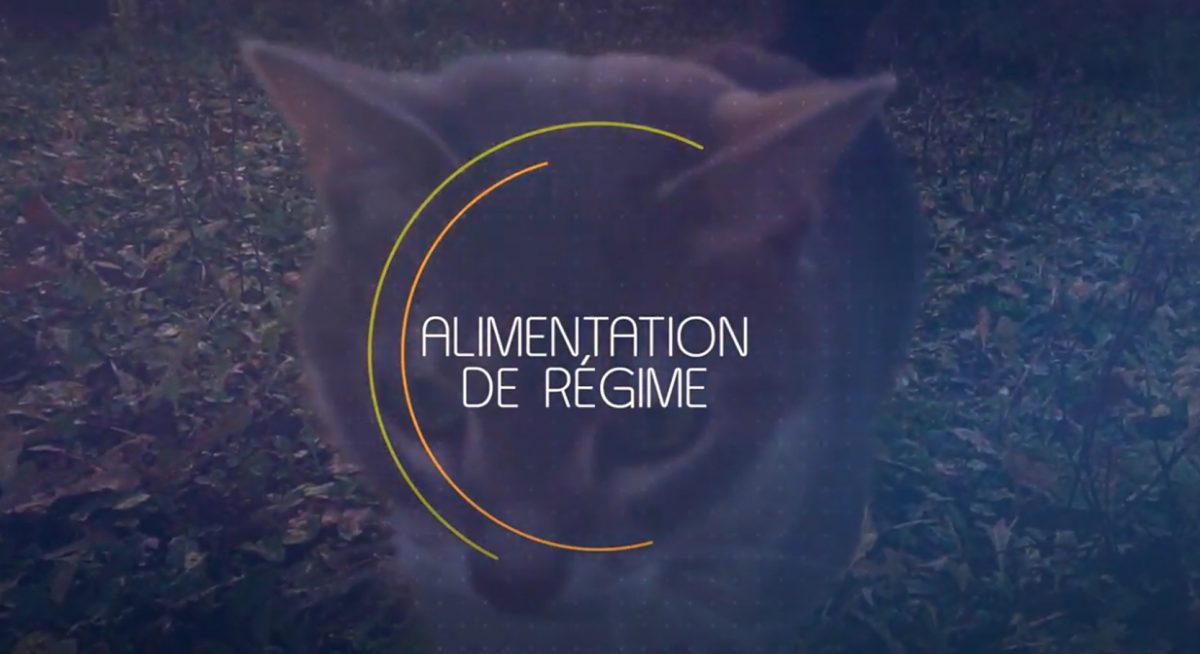 Alimentation veterinaire animaux paris 14 regime